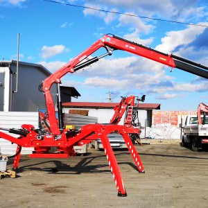 mini crane spider befard